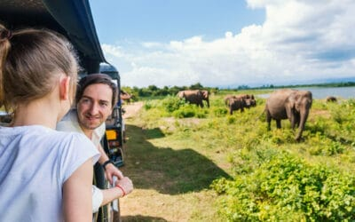 10 guidelines for sustainable safaris
