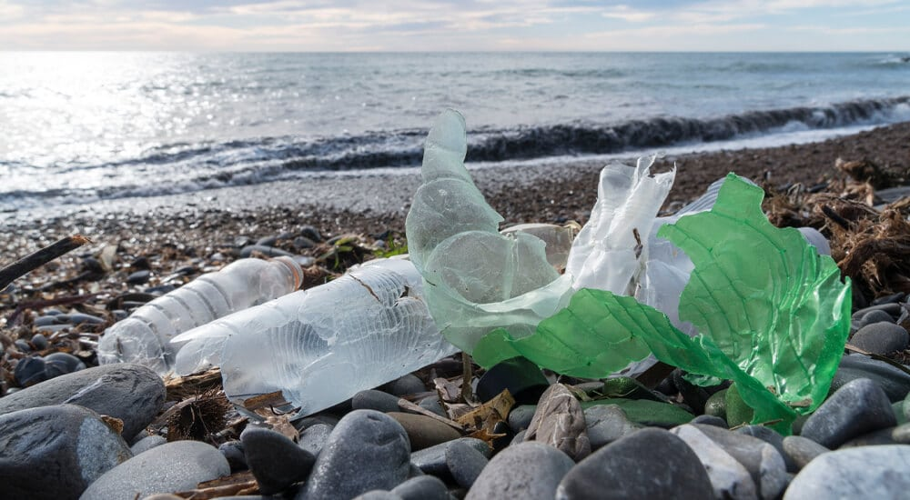 Reduce single-use plastic waste