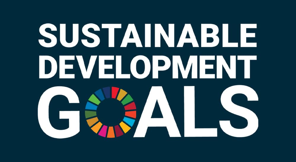 Align your sustainability strategy to the Sustainable Development Goals