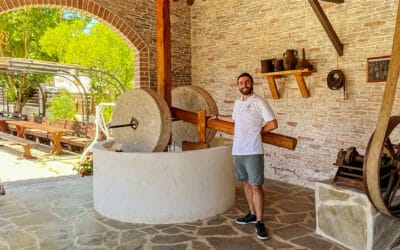 The Governor olive oil experience