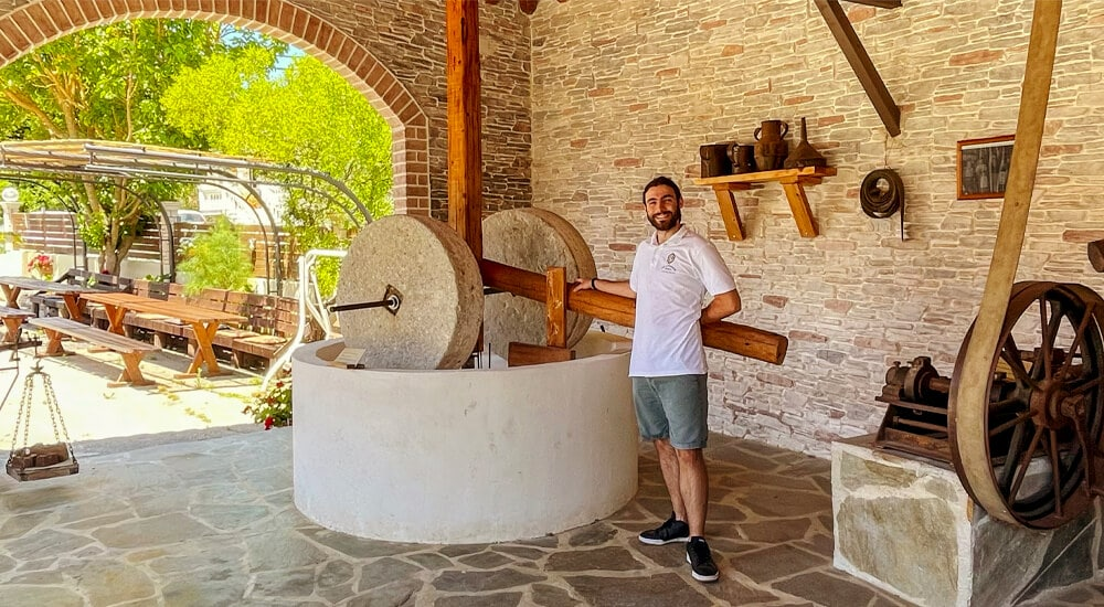 Governor olive oil experience